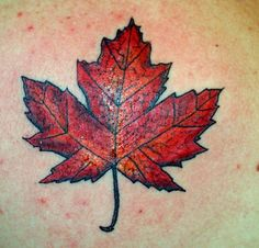 Google Image Result for http://www.adrenalinetattoos.com/assets/maple-leaf-tattoo-Ron-Smith-adrenaline-montreal.jpeg