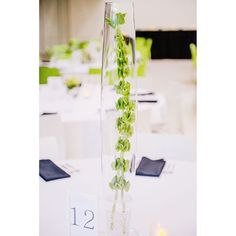 Green Bells of Ireland ring in the reception as centerpeices in fluted vases.  Image Credit: Amanda Basteen Photography
