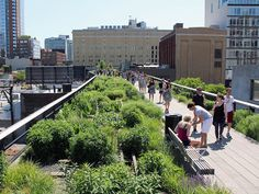 High Line Park sur Tout New York #Insolite #Monuments #Parc #Vue #Parcs #NewYork #NewYorkCity #Manhattan #nyc #NY #NewYorkLovers