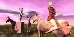 Saddle the donkey for me