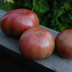 Cherokee Purple Tomato Seeds - I love Monticello's seed offerings! Growing Tomatoes, Growing Vegetables, Alpine Strawberries, Cherokee Purple, Types Of Potatoes, Purple Fruit, Tomato Seeds, Peach Trees, Tomatoes