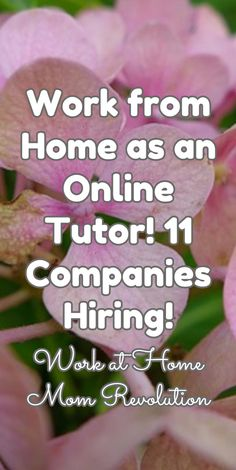 Work From Home Education Research Jobs