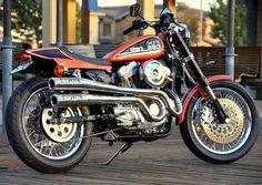 1995_Storz_Harley_Davidson_Sportster_883_Motorcycle_For_Sale.jpg