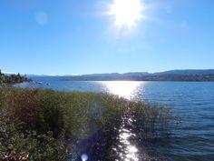 Wunderschöner Herbsttag am Zürichsee Celestial, Mountains, Sunset, Nature, Outdoor, Travel, Beautiful, Switzerland, Nice Asses