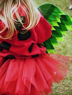 Ladybug Costume - DIY Halloween Costumes and Makeup Tricks on HGTV
