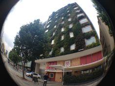 Somos un hotel que piensa en las consecuencias ambientales. Conoce nuestra fachada verde. #AlEstiloB3 #EcoCurioso Green Facade