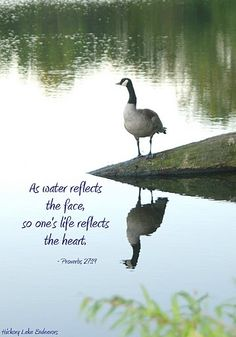 """""""As water reflects the face, so one's life reflects the heart."""" Proverbs 27:19 NIV"""