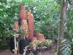 Alternative Eden Exotic Garden: David Nash at Kew