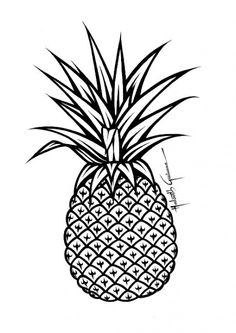 Abacaxi (Desenhos e Gravuras)
