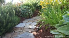Monday Funday Feature :: Front yard transformation :: Confessions of a Serial DIYer