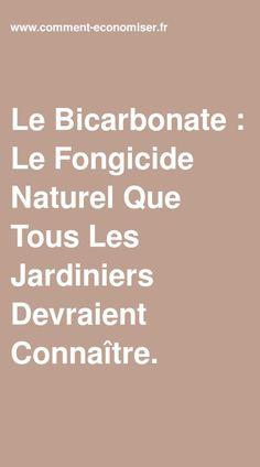 Le Bicarbonate : Le Fongicide Naturel Que Tous Les Jardiniers Devraient Connaître. Horticulture, Gardening Tips, Outdoor Gardens, Blog, Garden, Modern Gardens, Small Yards, Garden Decorations, Green Garden