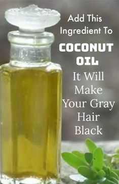 Add this 1 ingredient to coconut oil to make it a natural ha.- Add this 1 ingredient to coconut oil to make it a natural hair dye and turn your white hair black Add THIS To Coconut Oil, It Will Make Your Gray Hair Black Again - Diy Hair Care, Hair Care Tips, White Hair, Black Hair, Gray Hair, Natural Hair Mask, Natural Hair Styles, Natural Oil, Natural Beauty