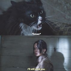 - Katniss and Buttercups relationship is so cute and hilarious. Also I will never understand why Gary Ross decided to put Buttercup as a black cat when he's supposed to be ginger. Thank god for Francis Lawrence correcting this mistake. Hunger Games Memes, Hunger Games Fandom, Hunger Games Trilogy, I Volunteer As Tribute, Nerd Jokes, Favorite Movie Quotes, Life Hacks For School, Catching Fire, Mockingjay