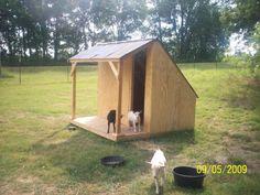 goat shelter | nehimama , prairiedog and GoatJunkie like this.
