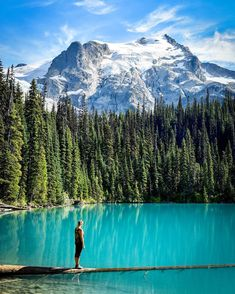 Canada excels in the special spaces where wilderness meets nature. Time to explore. Urban Park, Natural Wonders, Mount Rainier, Wilderness, Adventure Travel, Heaven, Hiking, Canada, Earth