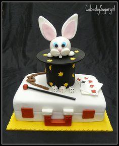 Briefcase magician cake