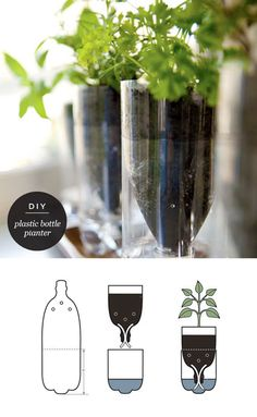 Self watering planters diy fresh diy self watering seed starter pot planter gardening recycle Plastic Bottle Planter, Reuse Plastic Bottles, Plastic Bottle Crafts, Recycled Bottles, Plastic Bottle Decoration, Water Bottle Crafts, Plastic Plant Pots, Bottle Garden, Diy Bottle