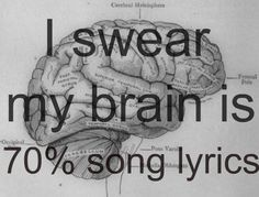 I swear my brain is 99.999999999% song lyrics!
