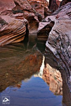 Reflection in Echo Canyon - Zion National Park, Utah by isaac.borrego, via Flickr