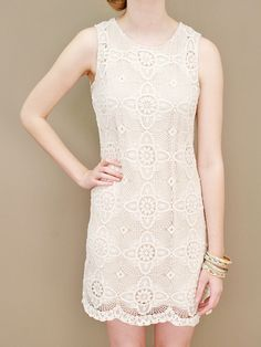 sleeveless lace shift dress in antique white with scalloped lace hem | shopcuffs.com