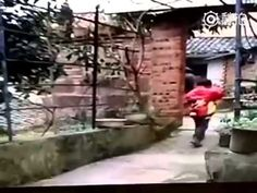 Sorpresa explosiva - videos de humor - humor variado   elRellano.com