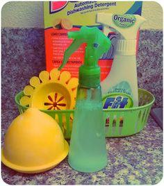 * Maria's Self *: Homemade Natural Fruit and Vegetable Wash + Soak Recipe