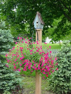 Garden post with hanging basket & bird house.