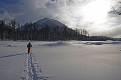 Shiribetsudake (Mt Shiribetsu or 尻別岳) is my go-to backcountry peak in the Niseko area. It's an all weather destination as it's pretty much all below the treeline, which makes it a great option on those d-e-e-p, stormy days. The approach is pretty short from the road and whilst the runs are short, most of them are quite steep. There's the odd opportunity to get airborne and there's quite a few different faces for variety. #snowboard #ski #splitboard #backcountry #hokkaido #japow #japanuary.