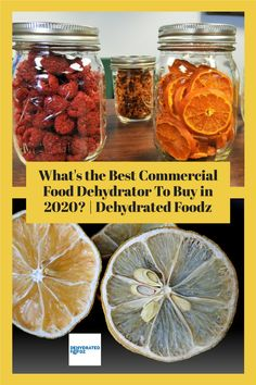 Learn about some of the best dehydrators you can buy here. #bestfooddehydrator #dehydratedfood #snacks #kitchen #dehydrator #foodehydratorrecipes Best Food Dehydrator, Dehydrator Recipes, Dehydrators, Making Jerky, Fruit Roll Ups, Electric Foods, Dehydrated Food, Beef Jerky, Healthy Snacks For Kids