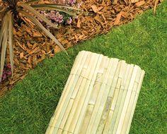 Bamboo Cane Screen