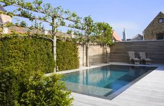 buitenzwembad, overloopzwembad, tuindouche ‹ De Mooiste Zwembaden Small Backyard Pools, Backyard Patio Designs, Modern Backyard, Outdoor Swimming Pool, Pool Decks, Patio Chico, Kleiner Pool Design, Pool Pavers, Pool Finishes
