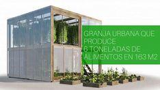 Impact farm: granja urbana vertical empaquetada y autosuficiemte Small Places, Hostel, Hydroponics, Townhouse, Sustainability, Eco Friendly, Outdoor Structures, Architecture, City