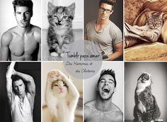 cstdrops-0513-tumblr-homens-gatos.jpg (853×622)