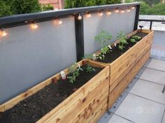 Long planter boxes.  Could use these as a faux wall on a patio.
