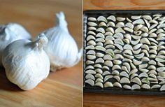 Domáci cesnakový prášok bez pridania umelých látok - Receptik.sk European Dishes, Animal Print Rug, Food To Make, Garlic, Food And Drink, Homemade, Recipes, Fruit, Youtube