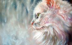 Colorful Kitty - Cats Wallpaper ID 1893637 - Desktop Nexus Animals