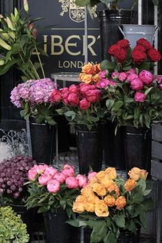 Roses in Liberty's of London.  I would love to see these in person.