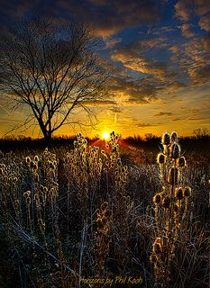 We are Here  | by Phil~Koch