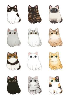 cats illustration * with illustration Cute Cat Drawing, Cute Animal Drawings, Kawaii Drawings, Cute Drawings, Cat Cartoon Drawing, Simple Cat Drawing, Kitty Drawing, Cartoon Cats, Drawing Drawing