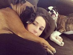 5 Breeds Who Are Surprising Snugglers | Dogster