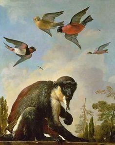 A Captive Diana Monkey on a Wall against a Landscape with Four Colorful Birds in the Sky: 1690 by Melchior d' Hondecoeter (Toledo Museum of Art, Toledo, Ohio) Landscape Illustration, Illustration Art, Toledo Museum Of Art, Birds In The Sky, Year Of The Monkey, Dutch Artists, Old Master, Animal Paintings, Find Art