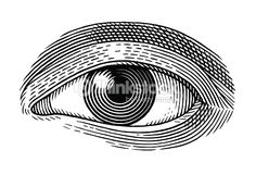 Clipart vectoriel : Oeil humain