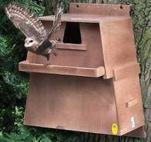 Barn owl chalet with camera system