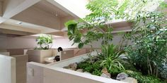 Japanese architect Katsutoshi Sasaki designed this two-storey house in hanekita for two family living in a residential neighbourhood in Okazaki, Japan. Indoor Outdoor Living, Indoor Garden, Indoor Plants, Home Decor Items, Cheap Home Decor, Two Storey House, Minimal Home, Interior Garden, Garden Landscape Design