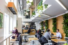 The best gluten-free restaurants in Toronto serve up some of the best wheatless meals the city has to offer. Just make sure to check with the resta. Jazz Bar, Gluten Free Restaurants, Types Of Food, Bao, 1970s, Toronto, The Neighbourhood, Good Things