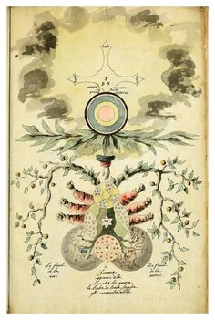 alchemy-illustration-Rose-Cross 02