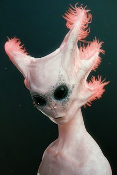 Abyssal Princess by David A.F. Creepiest thing. O.O AXOLOTL