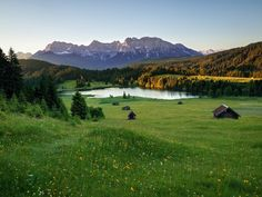 images of mountains and meadows - Google Search