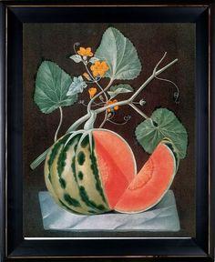 Antique Botanical Fruit Art Print Melon 2 England by BelleBotanica
