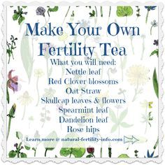 A great tea recipe to help boost your fertility and help you get pregnant. Fertility Spells, Fertility Foods, Fertility Smoothie, Pregnancy Spells, Pregnancy Tips, Natural Fertility Info, Tea Blends, Leaf Flowers, Getting Pregnant